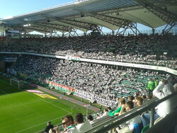 Zyleta (Legia)