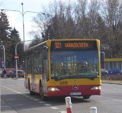 Plac Wilsona (autobus 121)