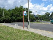 Olszynka (2)
