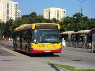 DSC03539