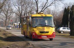 Potrzebna (autobus 206)
