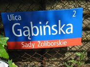 Gabinska (tablica)