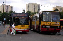 Metro Wilanowska (autobus Z44, autobus Z17)