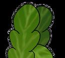 Mała Rzodkiewka