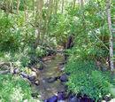 Pigeon Creek Number 2