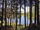 Three Lakes