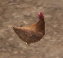 WL2 Цыплёнок