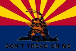 WL2 Arizona Citizens Militia Flag