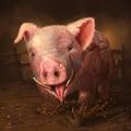 Wl2 portrait Pig.png