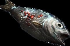 RawFish