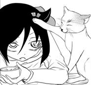 Cat Pat