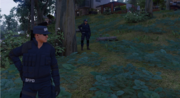 WD2PoliceSWATUnits1.PNG