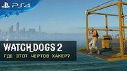 Watch Dogs 2 - Где этот чертов хакер?