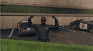 WD2PoliceOfficerPosing