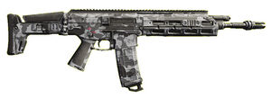 Biometric Rifle