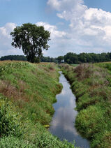 Marshall county Indiana yellow river