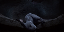 Chervil's Death