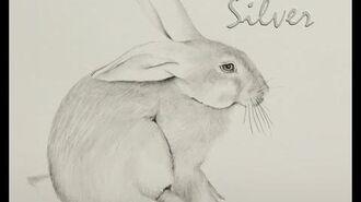 Drawing rabbits. Character study Silver Watership Down