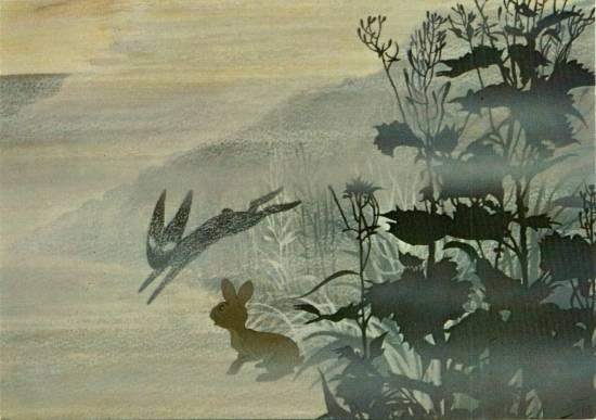 File:Black rabbit.jpg