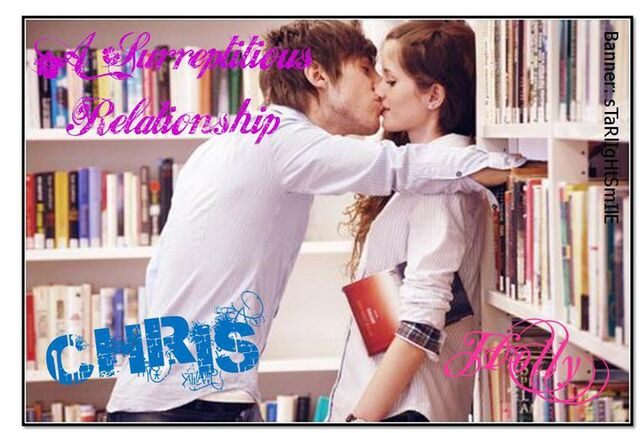 File:A Surreptitious Relationship banner2.jpg