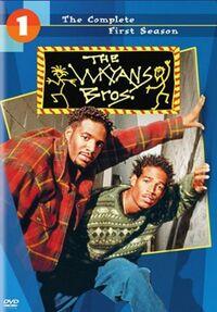 Wayans Bros - Season 1 DVD