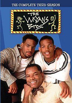 Wayans Bros - Season 3 DVD