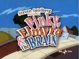 Pinky, Elmyra and the Brain