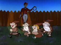 The Lawn Gnomes