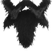 Beard of PAD 1