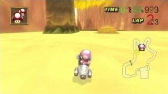 Mario Kart CWii- Daisy Palace