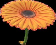 MKT Icon FlowerGlider