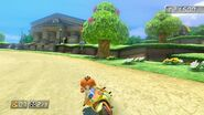 Mario Kart 8 PRINCESS Orange