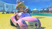 Cat Peach Mario Kart 8