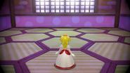 Fire Peach Back Super Mario 3D World