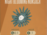 Night Blooming Nonsuch