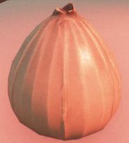 Onion Item