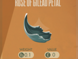 Rose of Gilead Petal