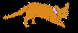 Wolftail2