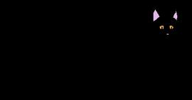 Female Shorthair Loner-1