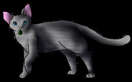 Dustfeather medicine cat file