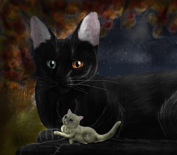 Nightshade & Mothkit