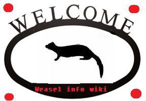 File:CatWelcomeSign.jpg