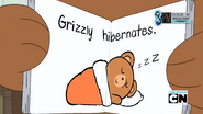 Hibernation 047