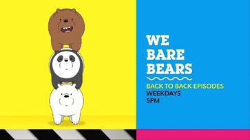 Btb bearstacks