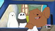 Panda's Date 101