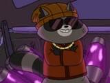 Jojo Raccoon