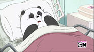 Panda's Date 176