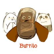 Burrito Promo