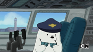 S02 Baby Bears on a Plane (308)