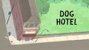 Dog Hotel Title
